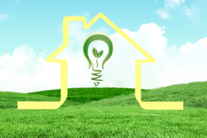 composite of house graphic with lightbulb on green field background